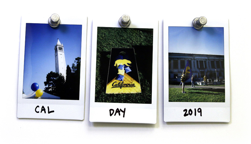 Polaroids of UC Berkeley on Cal Day.