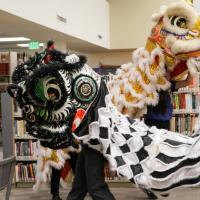 Lion dancers visit the Ethnic Studies Library.