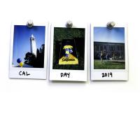 Polaroids of the UC Berkeley campus on Cal Day